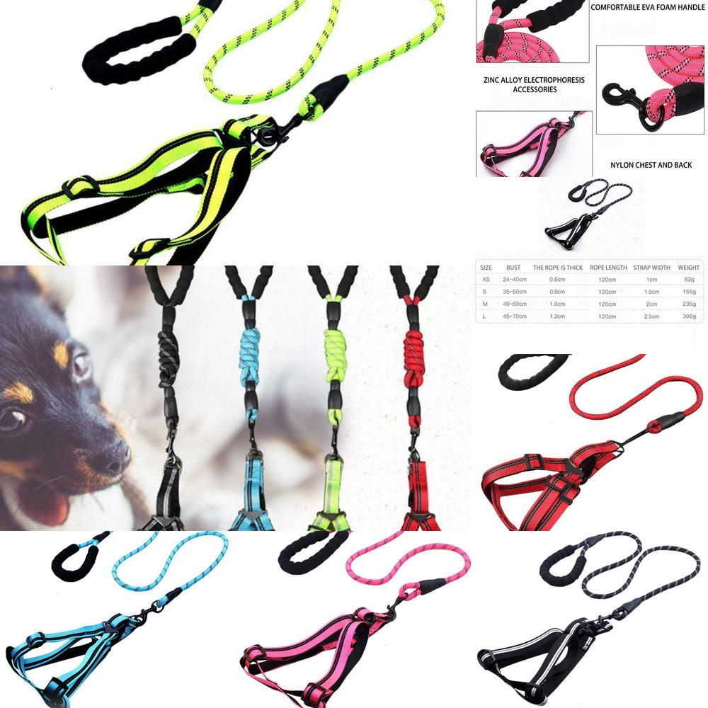 Rope Hand Holding Pet Harness Comfortable Nylon Material Durable Reflective Design Adjustable Pet Travel Outdoor Supplies1 X2RH