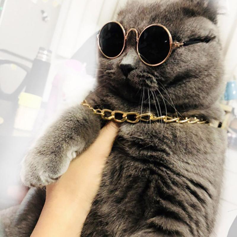 Cat Costumes 2021 Pet Sun Eyes ElementsPet Dog Accessories Sunglasses Necklace Set Decoration