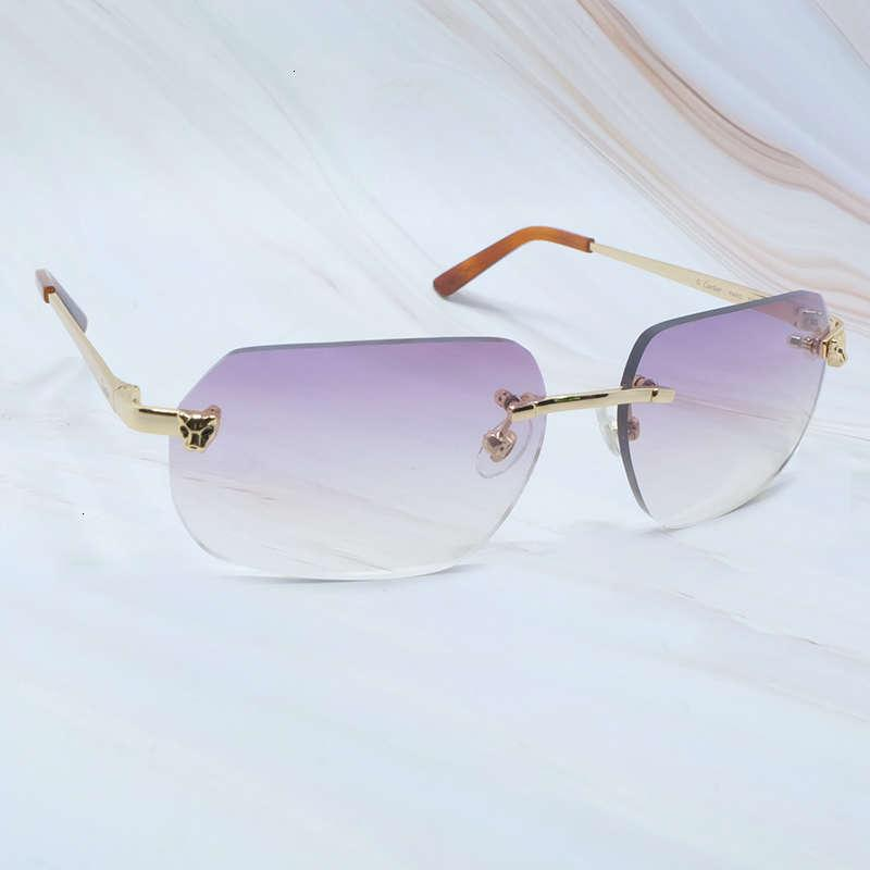 Ienbel Tinte Diseñador de moda Carter Gafas de sol Summer Fringe Mujeres y Gentlemen Brand Glass