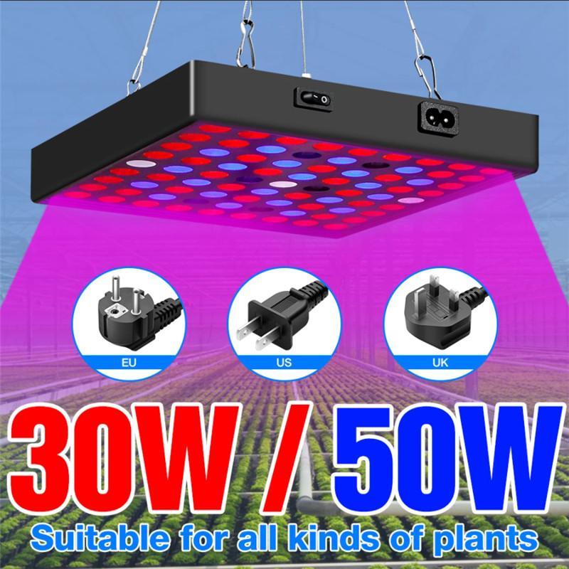 LED Grow Light 85-265V Full Spectrum Plant Lamp 30W 50W Indoor Growing Lamps For Seedling Greenhouse Lighting