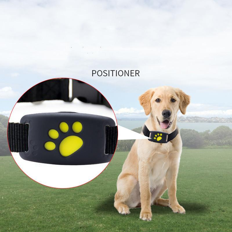 new GPS pet locator tracker pet anti-lost device mini pet smart wear Activity Trackers free shipping
