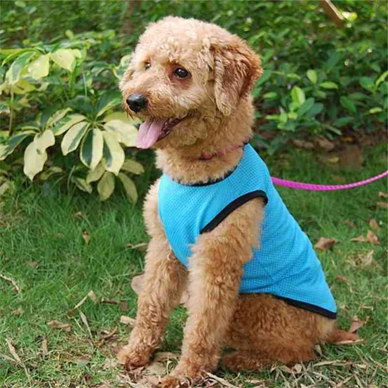 Sublimación Reflector en blanco Nylon Chaleco para perros de mascotas Ropa de malla transpirable ajustable Camisa de moda creativa Camisa de verano TUXEDO MET PET Suministros de perros Llano Mesh v