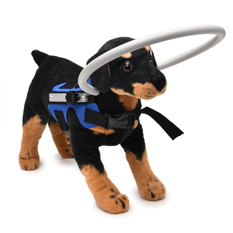 Cão Cego Da Segurança Do Animal De Estimação Com Um Anel Protetor Macio Colete Correia Auréola Dog Collars & Leashes