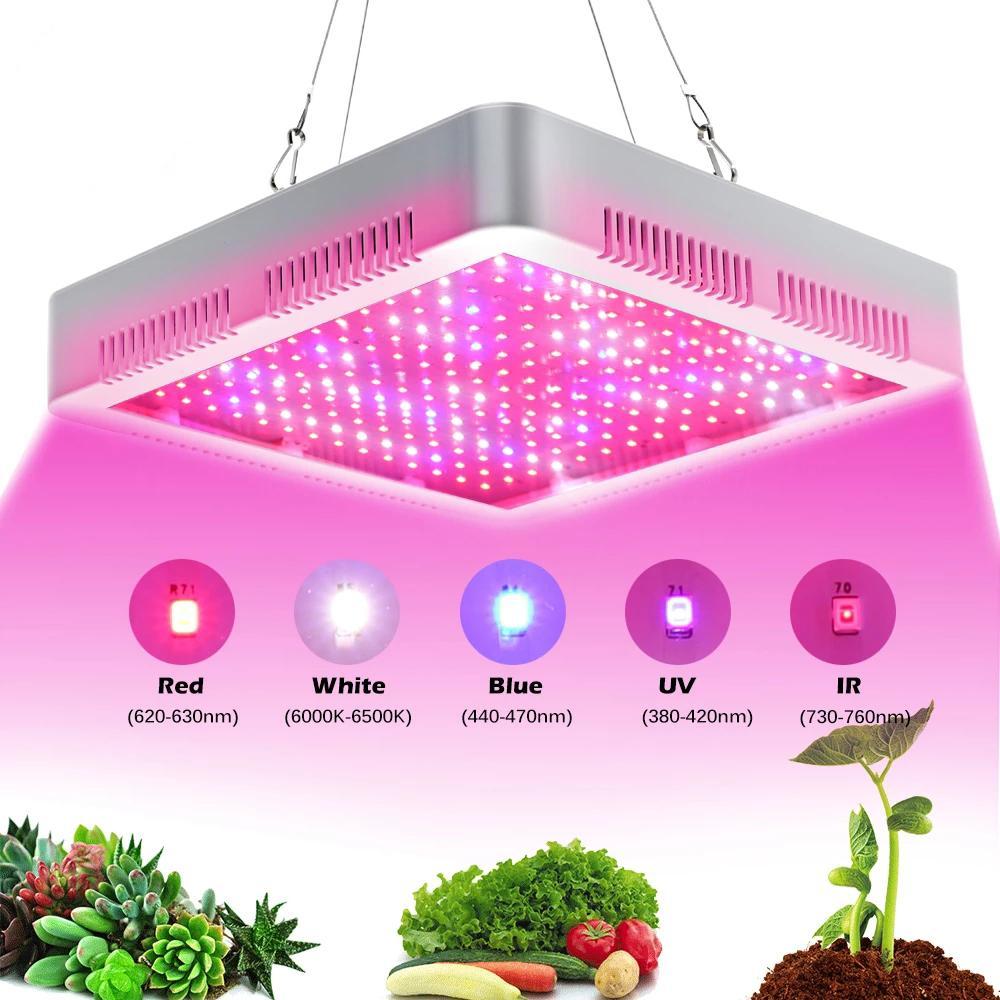 طيف كامل تنمو ضوء 2000W مزدوج رقاقة واحدة التبديل واحد للمغطاة خيمة الخضراء النباتات أنظمة المائية النباتات الخضار الداخلي زهرة الشتلات