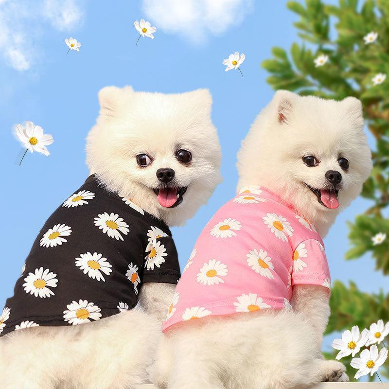 Chemise de chien occasionnelle Été petit chien Vêtements Chihuahua Voyage Cute Puppy Tshirt Teddy Camisole Pet Vêtements Ropa Perro Animaux de compagnie Vêtements