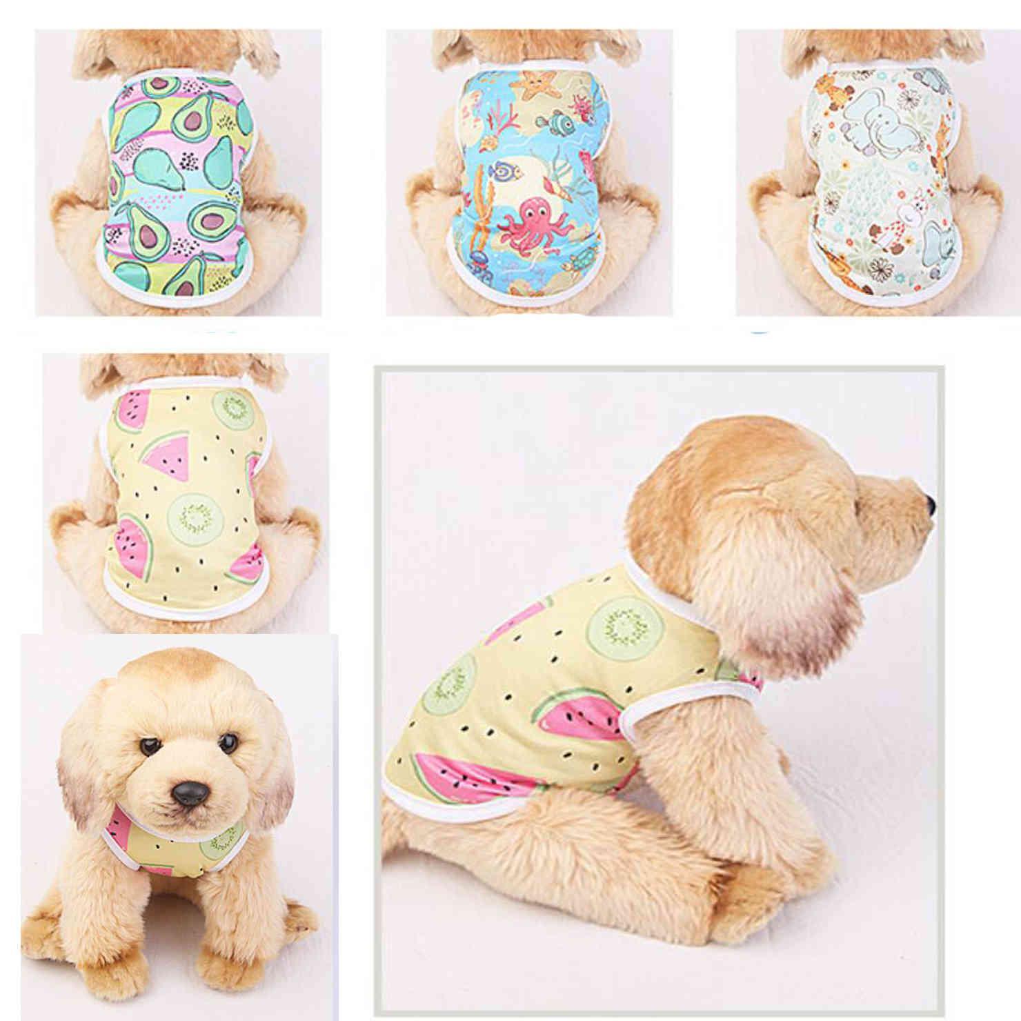 Ropa de perros de dibujos animados 2021 Ropa de perros clásicos para pequeños perros de invierno de invierno de invierno camisa encantadora ropa para perros