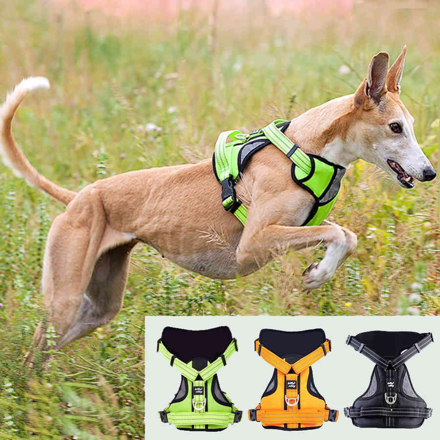 Pet Dog Strong Adjustable Harness Dog Chest Strap Soft Walk Out Harness Vest Collar Hand Strap for Small Medium Large Dogs