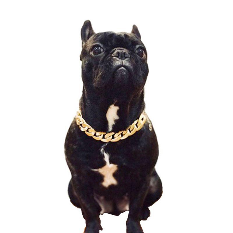 الأزياء الكلاب الذهبي سلسلة الياقات في الهواء الطلق شارع نمط الحيوانات الأليفة طوق الصلصال تيدي كورجي جرو لوازم الملحقات