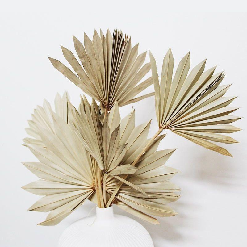 4pcs Dried Fan Leaves Boho Wedding Botanical Natural Leaf Home Decor Everlasting Fans White Palm Spear 210317