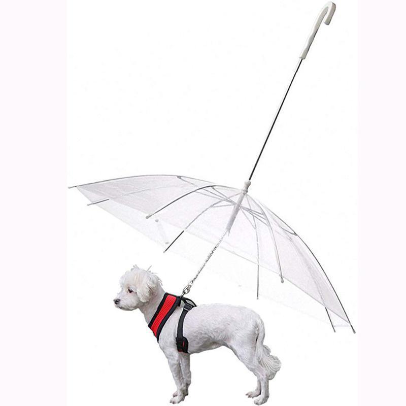 Abbigliamento per cani Pet Ombrellone Hyena Reverse Trasparente Tenere Dry Anti Rain Poncho Prodotti impermeabili