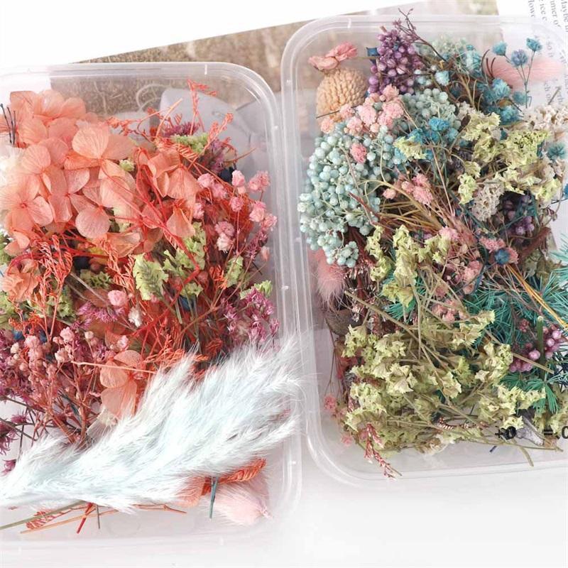 Nouveau -1 boîte de fleurs séchées réelles plantes sèches pour l'aromathérapie de la bougie époxy résine pendentif collier bijoux fabrication artisanat bricolage accessoires EWA5277