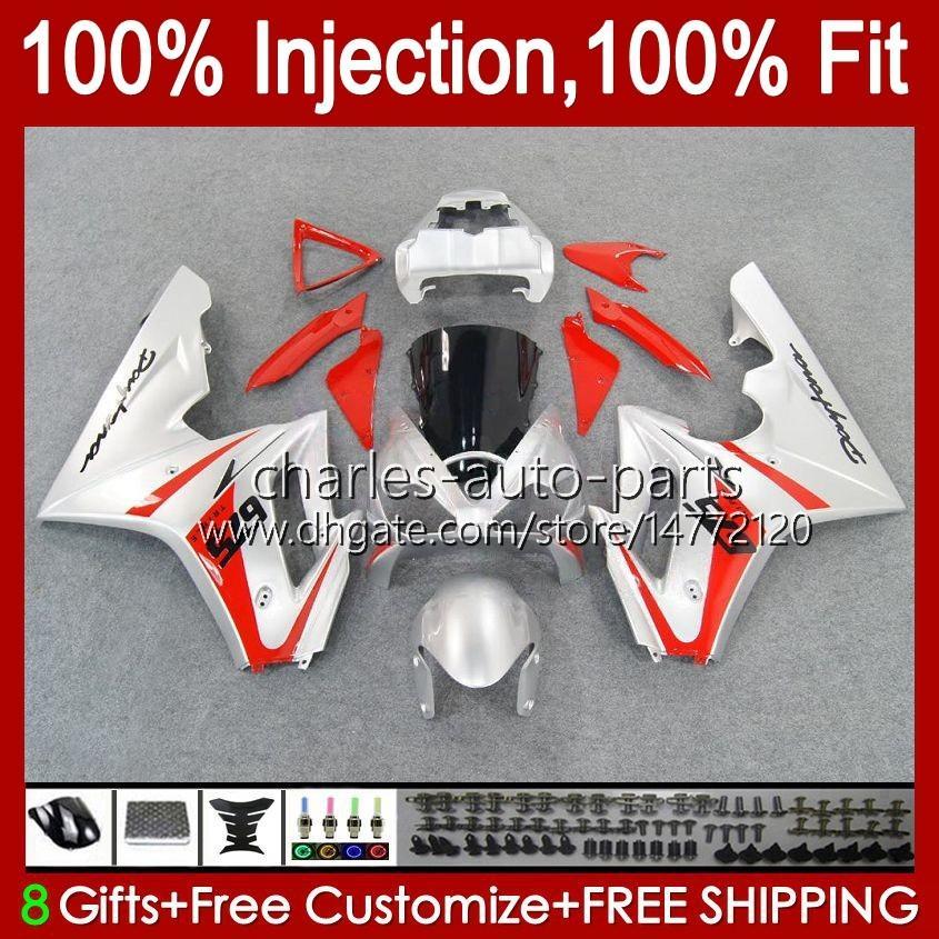 Body Body for Triumph Daytona 675 R 675R 02 03 04 05 2006 2007 2008 Kit 106HC.58 Red Silvery Stock Daytona675 Daytona 675 2002 2003 2004 2005 06 07 08 Fairing OEM