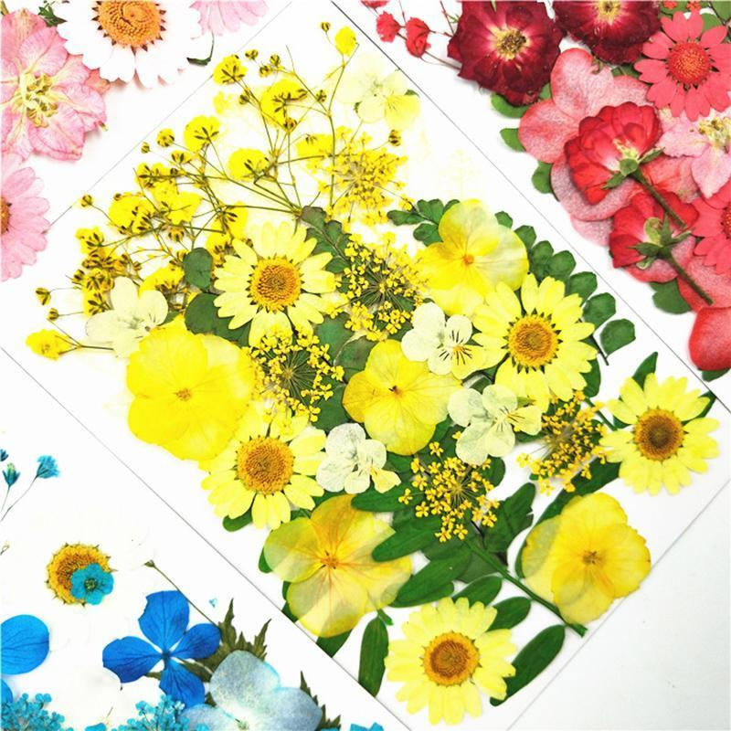 Small Dried Flowers Pressed DIY Preserved Artificial Decoration Home Mini Bloemen Decorative