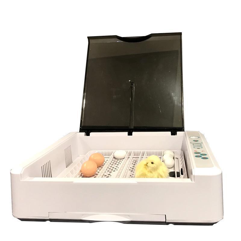 Incubateur à œufs de poulet 36PC EW-36 Poulet, canard et incubateur d'oiseaux, équipement d'élevage 110V / 220V, distributeurs de serviettes humides