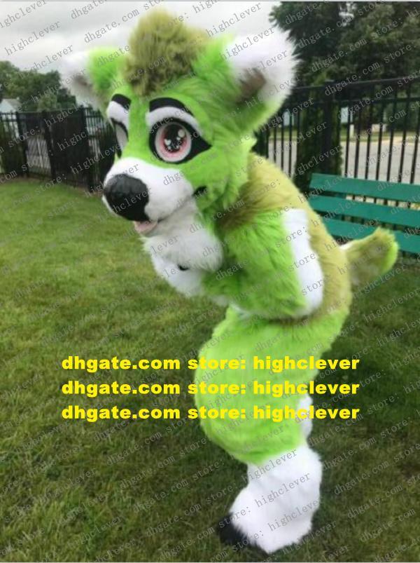 Verde largo piel peludo lobo perro husky perro zorro fursuit mascot traje adulto personaje de dibujos animados lindo amable empresa actividad zx3009