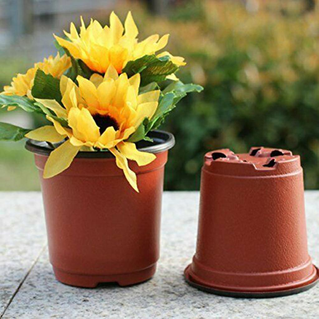 50 adet Saksı Tohumu Başlangıç Pot Çiçek Bitki Konteyner Succulents Fidan Y0314 Için