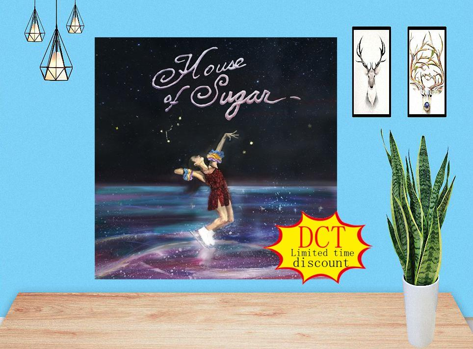 (Sandy) Alex G House of Sugar Music Album Cover Silk Art Print