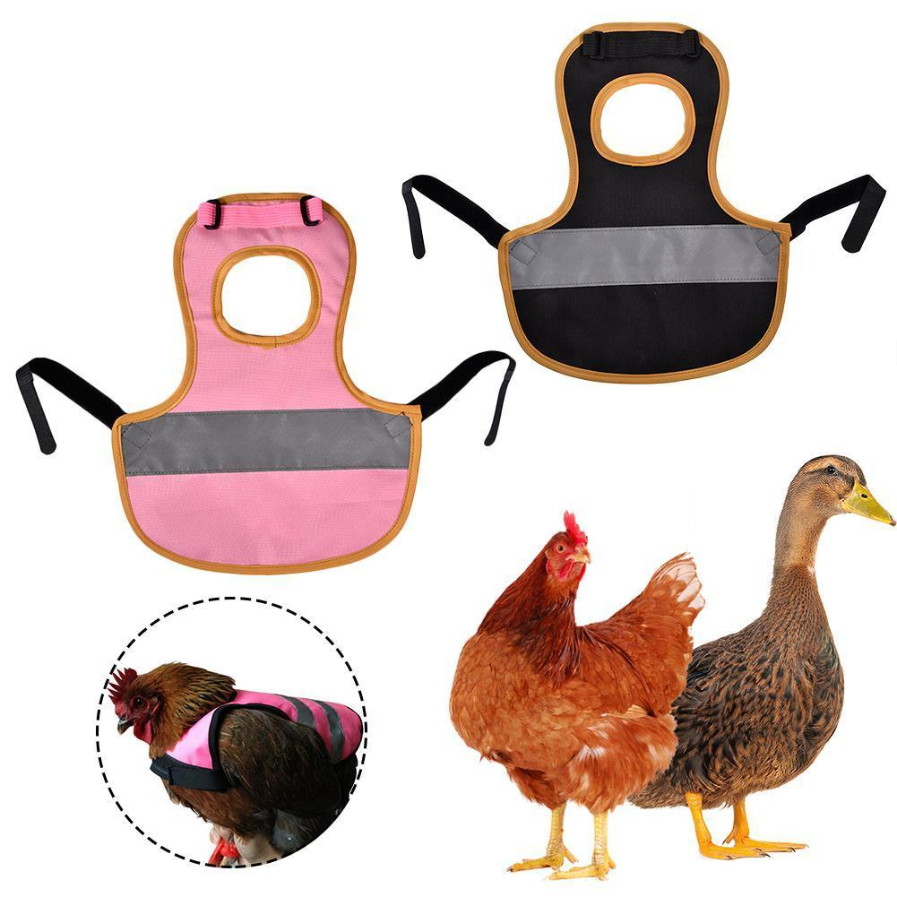 Chaleco de mascotas Ropa de aves de corral de pollo reflectante HEN Saddor delantal Banda elástica para la protección de plumas ajustable para pato