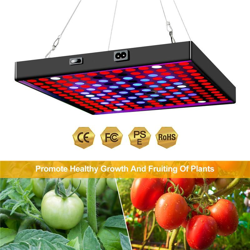 Full Spectrum Plant Light 2000W 3000W Phyto Lighting 85-265V Seedling Fito Lamp For Hydroponics Vegetable Flower LED Growing Lamps