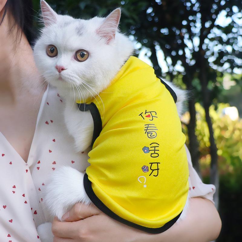 Sublimación reflector en blanco Nylon chaleco para perros mascotas de malla transpirable ajustable ropa creativa camisa de moda camisa de verano smoking mascota suministros de perro de dibujos animados coágulo