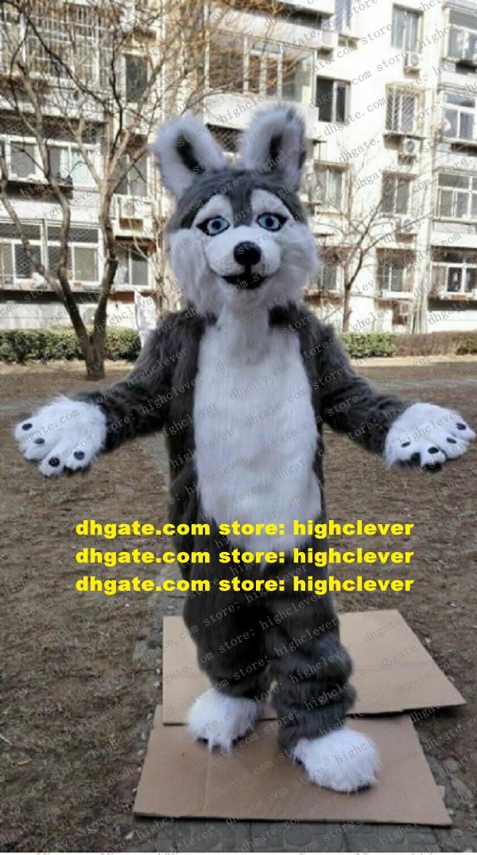 Gris pelaje largo peludo zorro lobo perro husky perro mascota traje fursuit adulto personaje de dibujos animados lindo amable hacer los honores zz7653