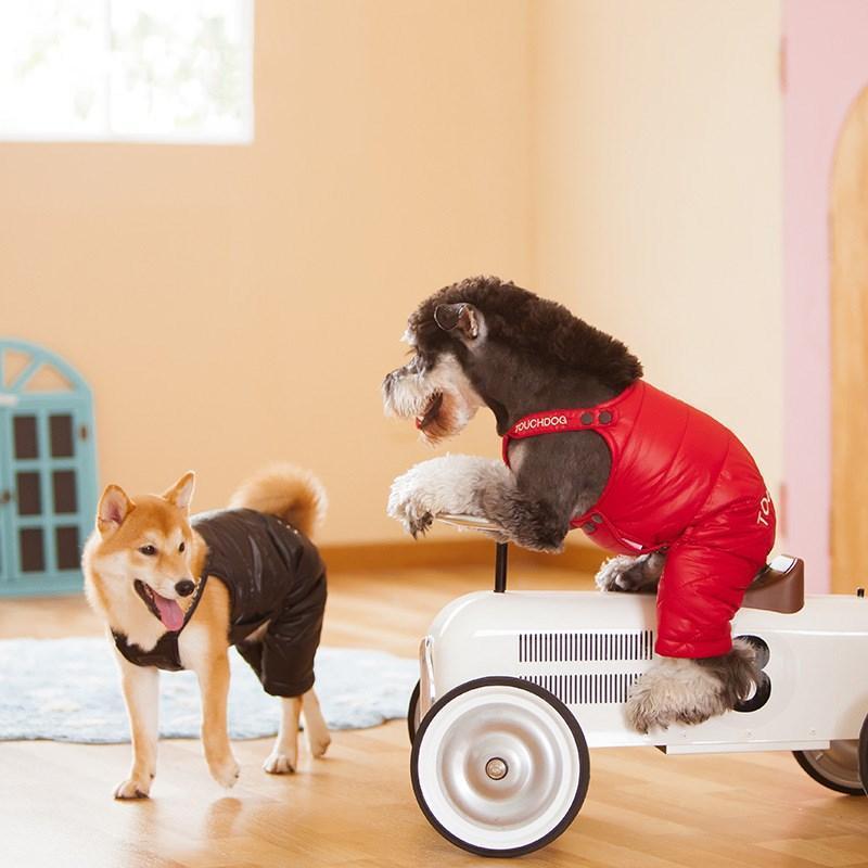 Dog STRENDERS DE DESIGNANTS DES VÊTEMENTS DE DESIGNEURS RESISTANTS AUTOMNE ET HIVER Pantalon rembourré Accessoires Vêtements