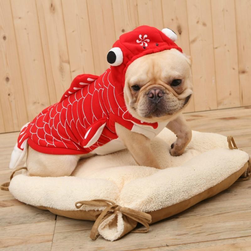 Köpek Giyim Noel Pet Giysileri Sevimli Goldfish Cosplay Kostüm Küçük Orta Noel için Xmas Sembolize İyi Şanslar