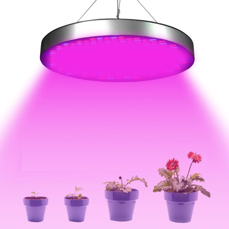 성장 램프 250 LED 가벼운 50W AC85-265V 전체 스펙트럼 실내 꽃 묘목 Phytolamp 온실 텐트 조명