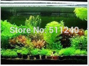 Бесплатная доставка Горячие продажи 300pcs аквариум травы семена (смесь) воды водные семена растений (15 видов) семьи легкие семена растений
