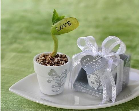 Free-Shipping-Love-Magic-Bean-100set-lot-Very-Good-for-Wedding-favors-and-gift