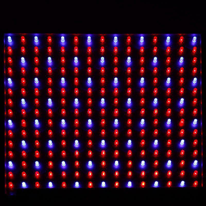 Großhandel Quadband 14w 225led Blau + Rot Led Wachsen Licht Lampe ...