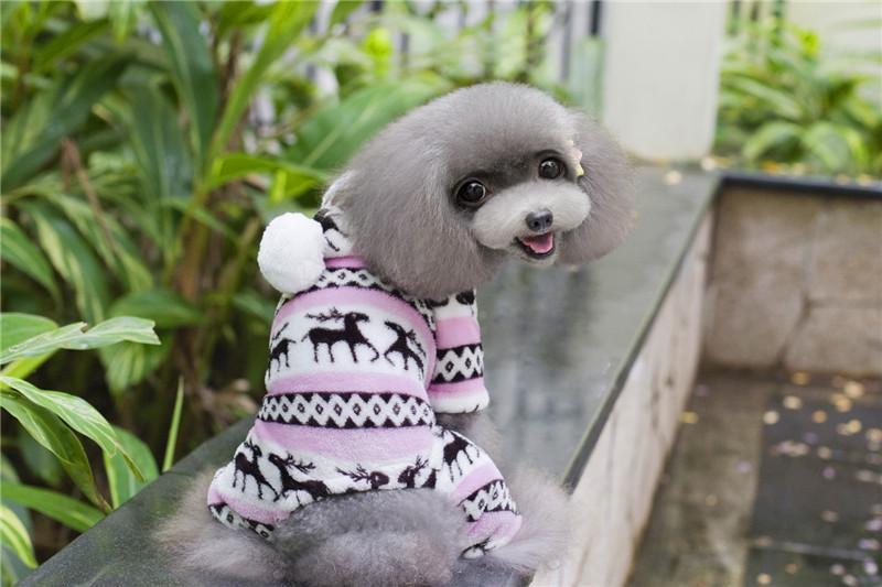 A19 chien manteau chaud en molleton corail pour 4 jambes