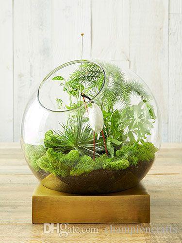 2019 Glass Moss Orb Terrarium Air Plants Indoor Garden Terrarium