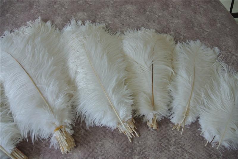 Venta al por mayor 100 unids Blanco pluma de avestruz pluma para la boda centro de decoración de la boda FIESTA DE EVENTOS decoración fuente feative decoración