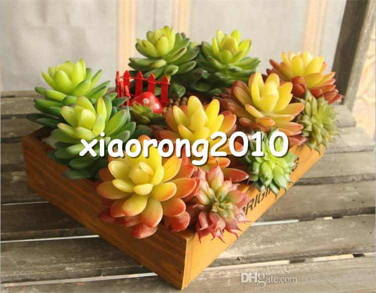 2021 Plastic Succulent Plants 11cm 4 33 Length Artificial Flowers Real Touch Conjoined Stone Lotus For Home Xmas Showcase Decor From Xiaorong2010 45 33 Dhgate Com
