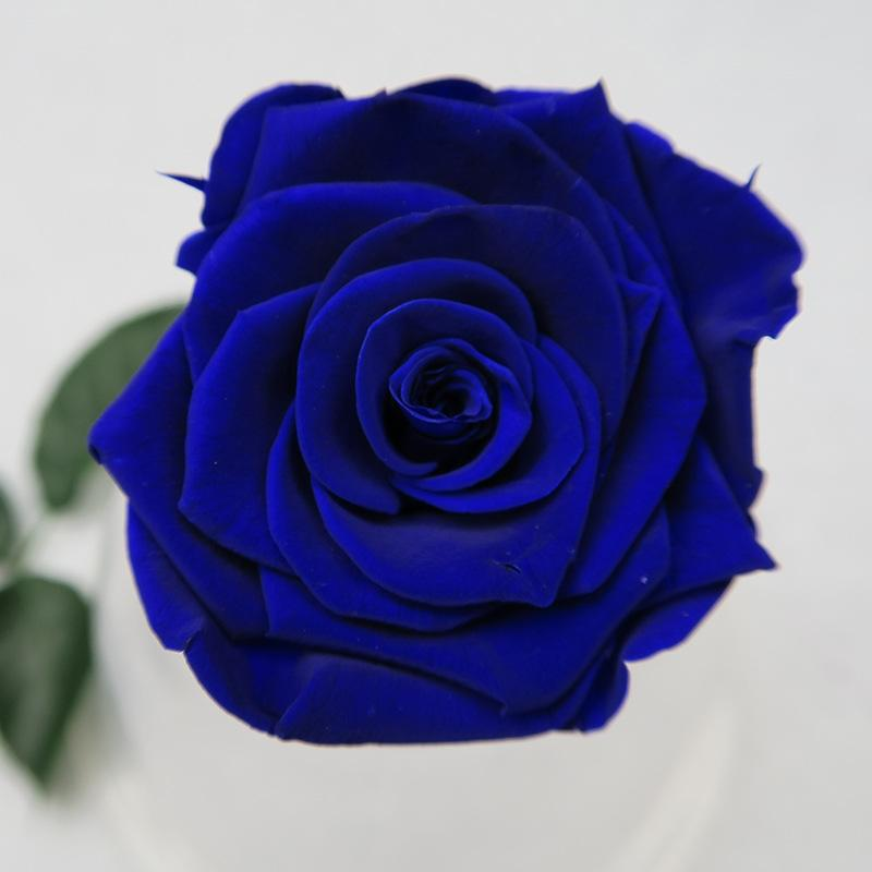 wholesale scented immortal flowers and roses preserved flowers, Ideas