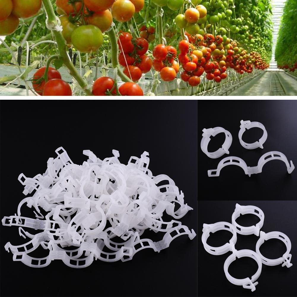 Новый прочный 23 мм пластиковый завод поддержки клипы для типов растений висит винограда сад овощи сад украшения