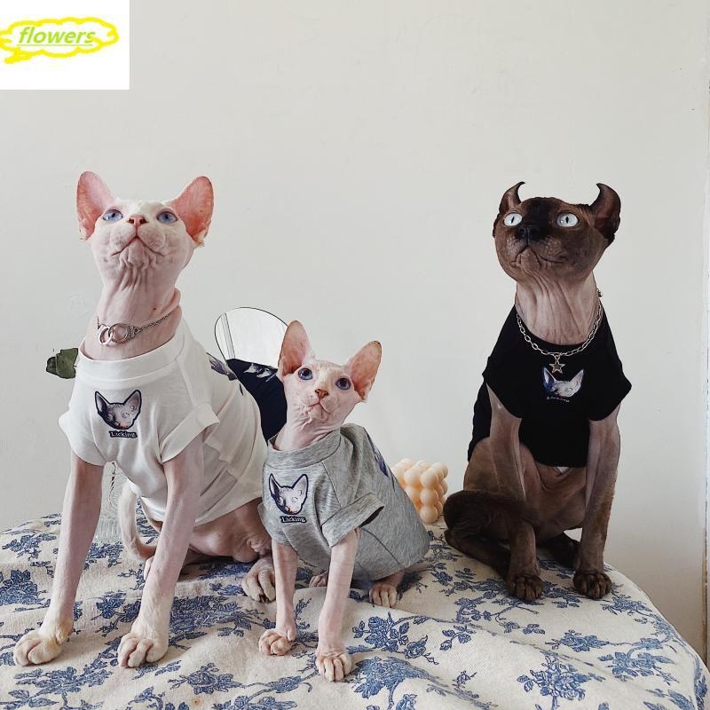 Disfraces de gatos Ropa sin pelo Pet Sphinx Tshirt Alemán Pareja artística alemán Padre-niño Ropa de algodón para perros pequeños