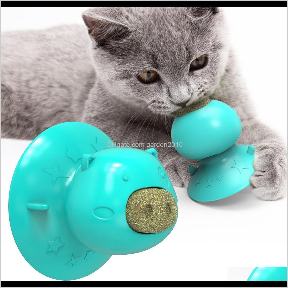 Multi Lick Odontoprisis Mint Licking Molar Suction Cup Resistance To Bite Cat Toys Chews Dog Pet Supplies Ha286 7Ogmt Zloda