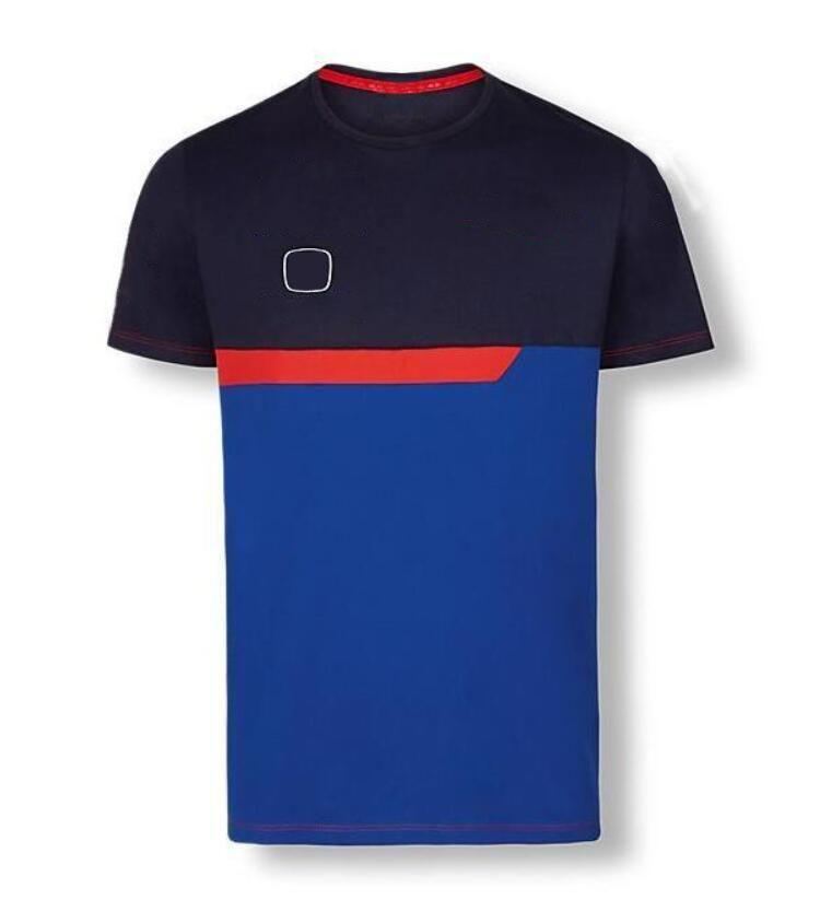 Fórmula 1 Camisa Polo Camisola Corrida Fãs de Carros Personalizar Uniformes de Equipe de Mangas Curtas Quick-Secagem Respirável T-shirt Jaqueta de Rally Macacões