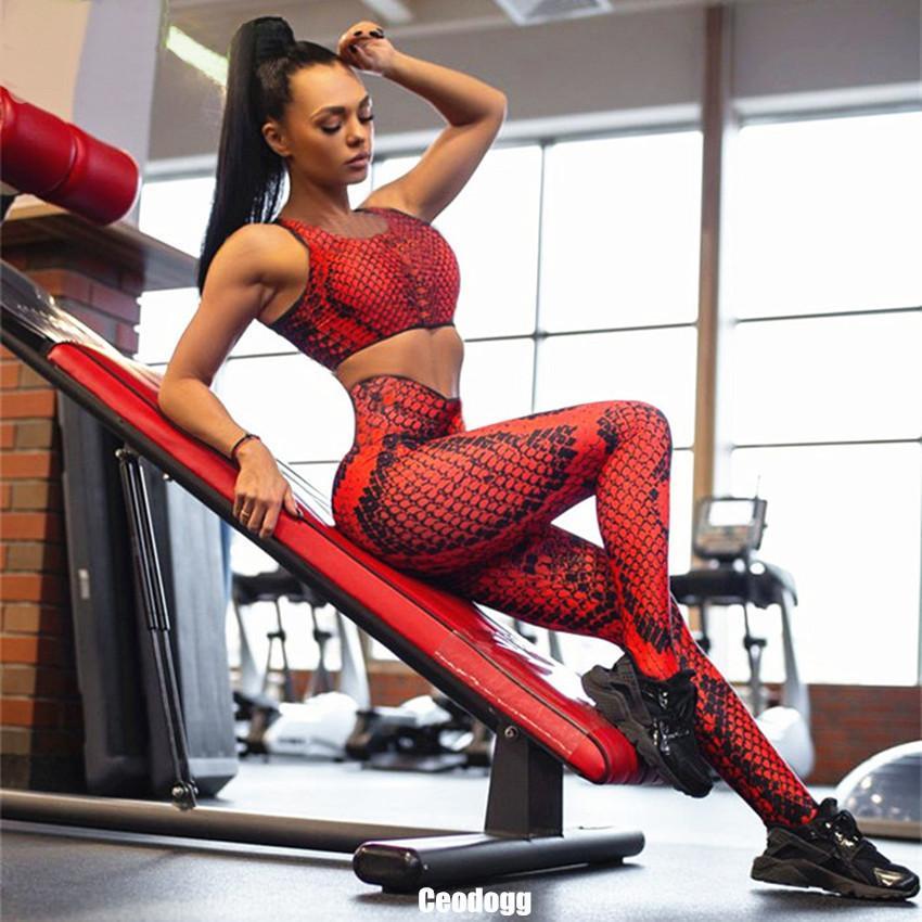 Pad Yılan Cilt Kadın Yoga Set Dikişsiz Elastik Nefes Spor Spor Spor Giyim Koşu Sportwear Yoga Takım Elbise