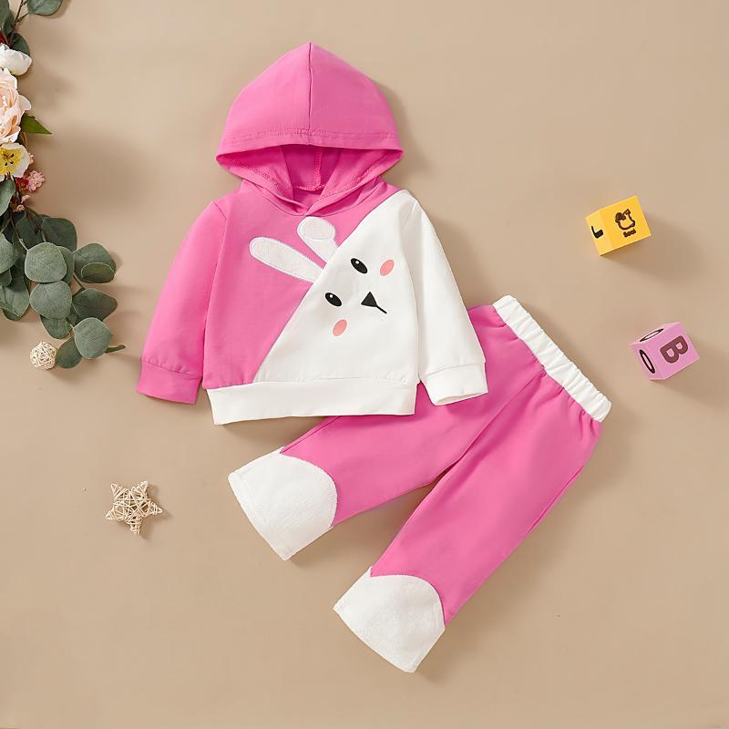 Conjuntos de ropa Nacido Baby Girl Ropa Primavera Snowdler Rosa Manga largaCectriz Imprimir Sudaderas con capucha y pantalones 2pcs Trajes Conjunto