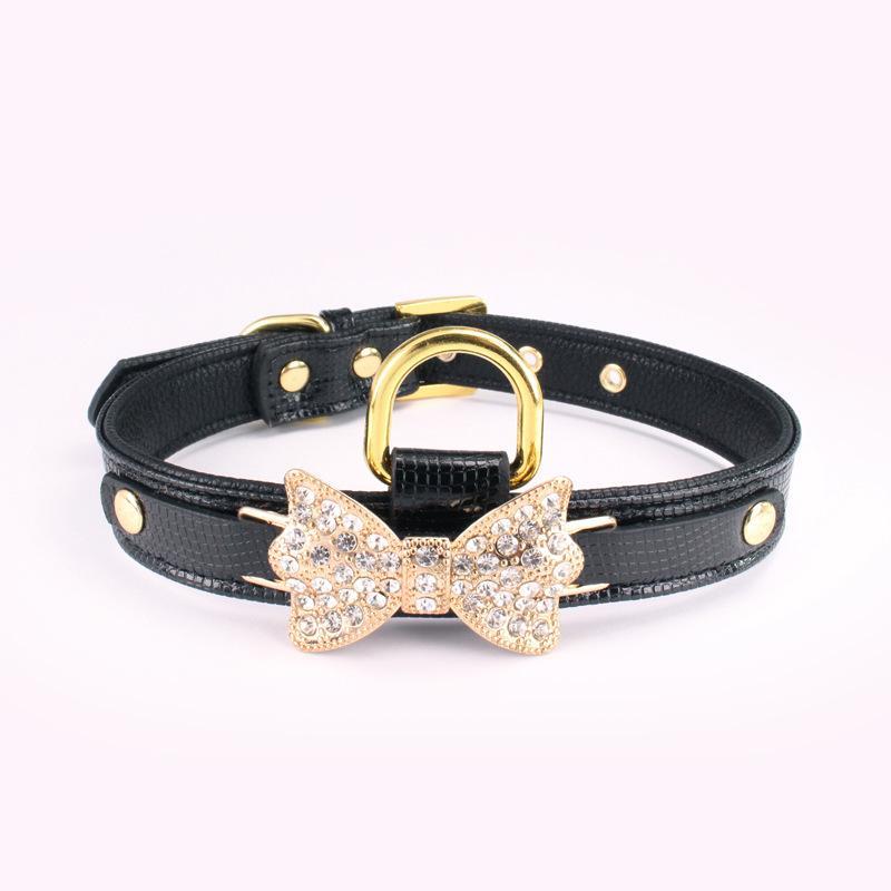Netter personalisierter Designer Hund Leder Pet Halsbänder Plus Pflege Service Matching Kragen Leine Gurte Set Kamm Welpengurt 526 s2