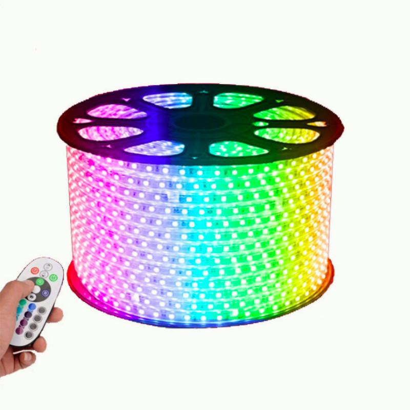 60pcs/m Leds Strip Lamp 220V110V SMD5050 IP65 Waterproof RGB Changeable Led Strips Light with Controller for Outdoor