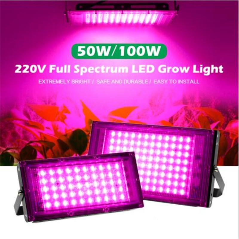 50W 100W Full Spectrum LED Grow Light PhytoLamp For Plants Tent Flower Seeding AC 220V Range Lamp Outdoor Floodlight Growth Phyto Box
