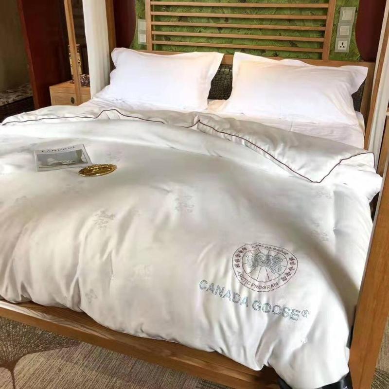 Maulberry-Silk-Quilts Queen-Size-Bettdecke 200 * 230 König Bettdecke Einfügen von Decket-Bettdeckensätzen