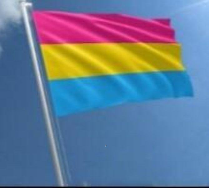 NewRainbow Flag 3x5ft 90x150cm LGBT Bandera Banner Poliéster colorido arco iris bandera decoración al aire libre bandera bisexual pansexual jardín banderas zze7942