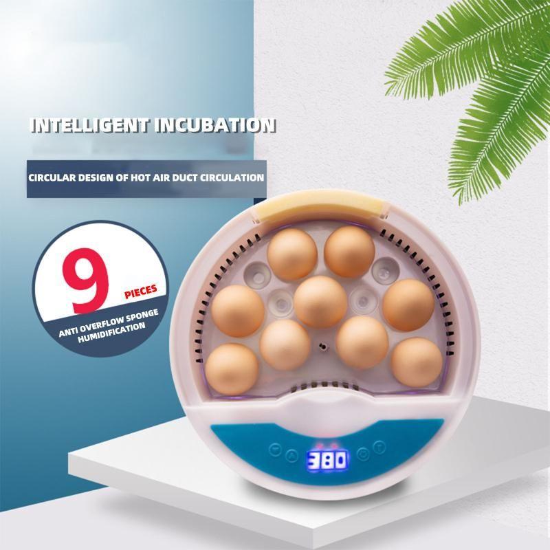 Oeufs d'incubateur d'oeufs Automatique Automatique avec une température numérique Ferme Home Farm EU / US / UK / UE Chaudières