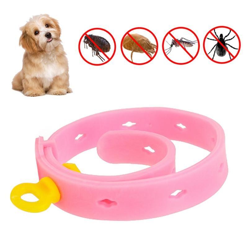 Pet insetto Repellente Collar Cat Dog Puppy Plea Control Regolabile regolabile Comodo Tick Pratico Gomma Collana Gomma Collari Collari