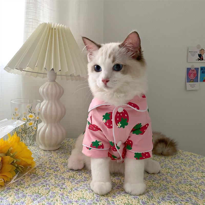 Traje de gato de primavera ropa de mascota acogedora linda para gatos Katten Kedi Hoodie Mascotas Gato Sudadera Suéter Mascotas Ropa Traje Trajes Trajes